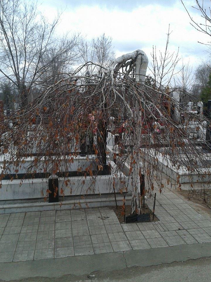 А на кладбище все спокойненько