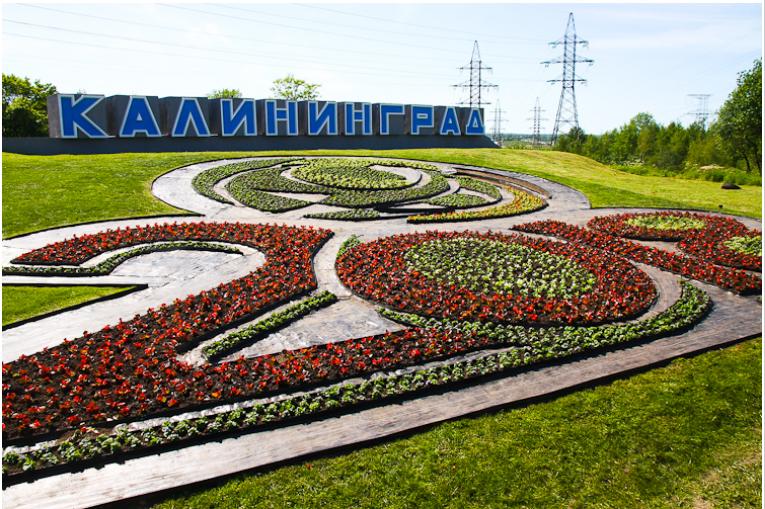 Калининград клумба
