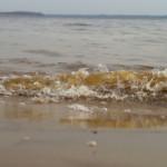 На четырех пляжах Самары купаться нельзя