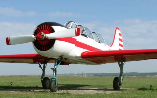 Самолет Як-52 упал на огород частного дома, члены экипажа мертвы
