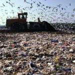 В Тольятти нет бюджетных средств на утилизацию мусора и бытовых отходов
