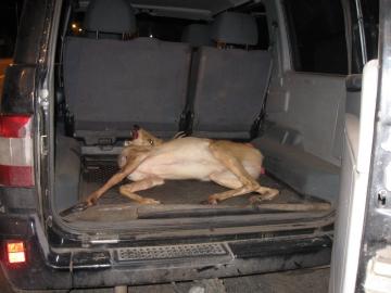 Сызранского браконьера приговорили к исправительным работам и штрафу