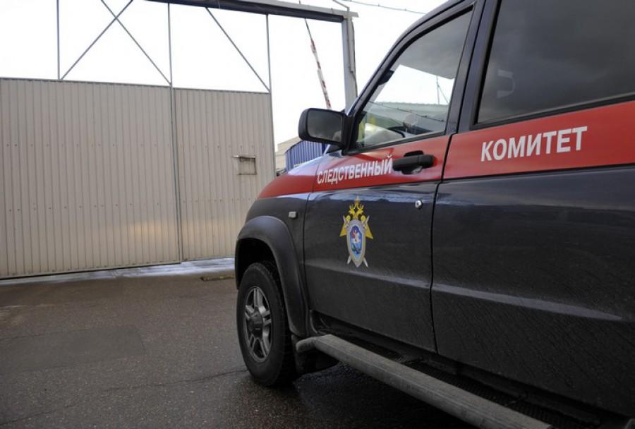 Следователи возбудили уголовное дело по статье «Доведение до самоубийства»