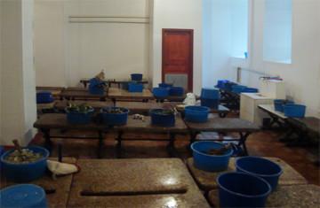 В Самаре увеличат тарифы на мытьё в банях