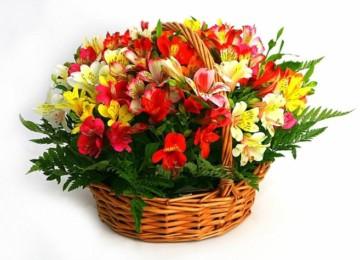Флористы создадут для вас прекрасный букет, а мы организуем его доставку