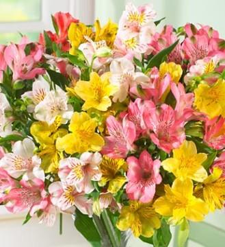 Цветы с доставкой на страже хорошего настроения