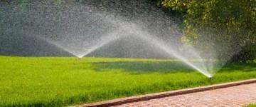 Рулонный газон откомпании «ВипГазон» – простой ибыстрый способ озеленения