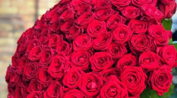 101 роза – лучший выбор, чтобы произвести впечатление?