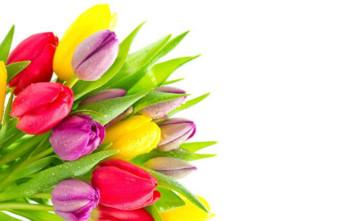 Заказ идоставка цветов наFlowers.ua